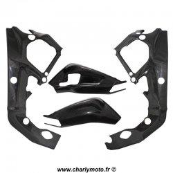 Pack protections de cadre et bras oscillant Carbone BMW S1000RR 12-14 / HP4 13-15